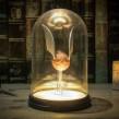 Φωτιστικό Golden Snitch - Harry Potter