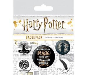 Pins Set Harry Potter - Symbols