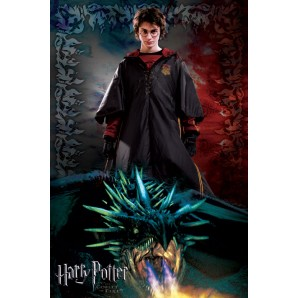 Αφίσα Harry Potter and the Goblet of Fire-dragon