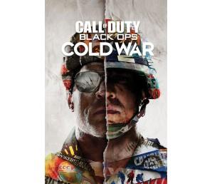 Αφίσα Call of Duty Black Ops Cold War - Split