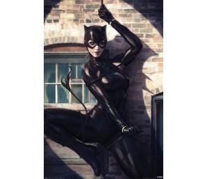 Αφίσα DC Catwoman - Spot Light